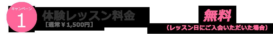 佐藤朱実バレエスクール_201811_10anniversary キャンペーン